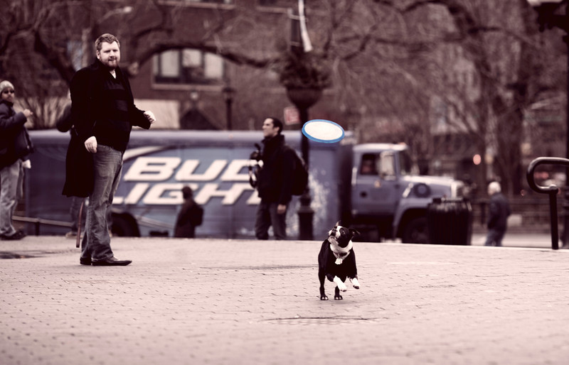 IMAGE: http://phlotography.smugmug.com/Nelson-Malave/NYC-2012/March-2012/i-FT6h55P/0/L/MG1960f-L.jpg